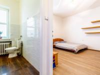 Průhled z předsíně do obývacího pokoje a koupelny - Prodej bytu 1+kk v osobním vlastnictví 27 m², Praha 1 - Nové Město