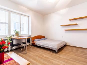 Obývací pokoj - Prodej bytu 1+kk v osobním vlastnictví 27 m², Praha 1 - Nové Město