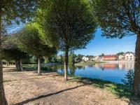 obecní rybník (Prodej domu v osobním vlastnictví 222 m², Suchomasty)