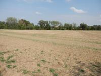 Prodej pozemku 22029 m², Herink