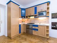 detail kuchyně (Prodej bytu 2+kk v osobním vlastnictví 50 m², Praha 2 - Vinohrady)
