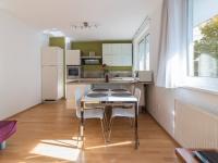 Pronájem bytu 1+kk v osobním vlastnictví 50 m², Praha 10 - Strašnice