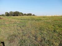 Prodej pozemku 1384 m², Zásmuky