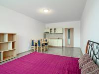 pokoj - Pronájem bytu 1+kk v osobním vlastnictví 40 m², Beroun