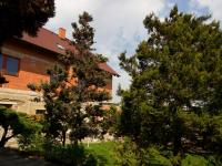Pohled na dům ze zadní části zahrady - Prodej domu v osobním vlastnictví 300 m², Úvaly
