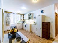 Prodej bytu 1+kk v osobním vlastnictví, 54 m2, Praha 3 - Žižkov