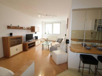 Prodej bytu 1+kk v osobním vlastnictví 40 m², Praha 8 - Troja