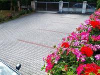 Parkovací místa z terasy - Pronájem kancelářských prostor 175 m², Praha 6 - Dejvice