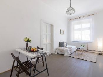Prodej bytu 1+kk v osobním vlastnictví 31 m², Praha 7 - Holešovice