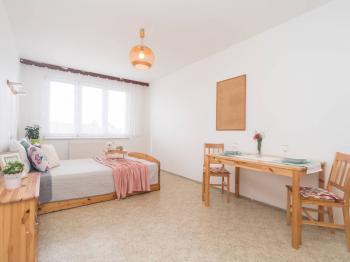 Prodej bytu 1+kk v osobním vlastnictví 26 m², Praha 5 - Jinonice