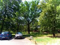 Parky v okolí - Prodej bytu 1+kk v osobním vlastnictví 23 m², Praha 8 - Kobylisy