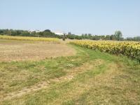 Prodej pozemku, 1131 m2, Rousínov