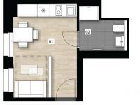 5210 - Prodej bytu 1+kk v osobním vlastnictví 19 m², Praha 2 - Vinohrady