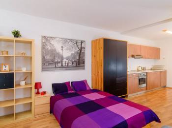 Pronájem bytu 1+kk v osobním vlastnictví, 33 m2, Praha 3 - Žižkov