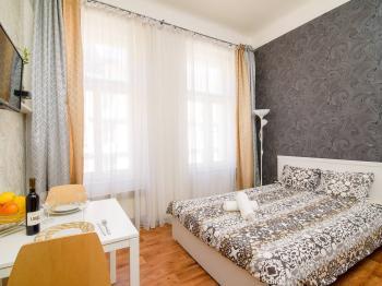 Pronájem bytu Garsoniéra v osobním vlastnictví, 20 m2, Praha 3 - Žižkov