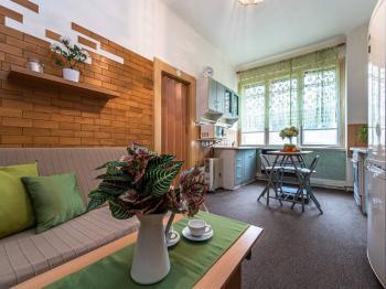 Prodej bytu 2+kk v osobním vlastnictví, 43 m2, Praha 3 - Žižkov