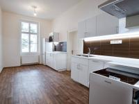 Kuchyně - Pronájem bytu 3+1 v osobním vlastnictví 116 m², Praha 1 - Nové Město
