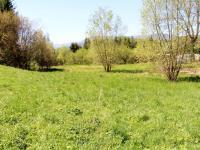 Prodej pozemku 3377 m², Jeseník
