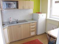 Pronájem bytu 1+1 v družstevním vlastnictví 41 m², Jeseník