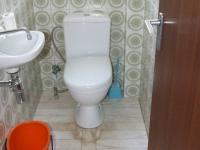 wc - Prodej domu v osobním vlastnictví 132 m², Česká Ves