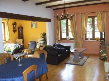 obývací místnost - Prodej domu v osobním vlastnictví 260 m², Petrovice
