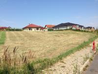 Pozemek v letním období (Prodej pozemku 1536 m², Zlatá)