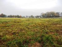 Prodej pozemku 7624 m², Zásmuky