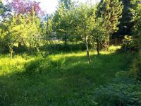 Prodej chaty / chalupy 30 m², Ondřejov