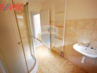 Koupelna  (Prodej komerčního objektu 2668 m², Stěžery)