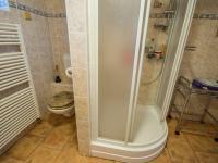 koupelna - suterén (Prodej domu v osobním vlastnictví 330 m², Hradec Králové)