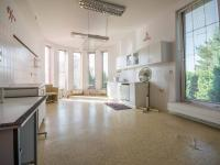 ordinace  (Prodej domu v osobním vlastnictví 330 m², Hradec Králové)