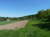 Prodej pozemku 9084 m², Dvůr Králové nad Labem