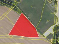 Prodej pozemku 3800 m², Sendražice