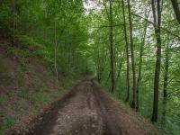 cesta k pozemu - Prodej pozemku 365 m², Záchlumí