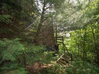 pozemek - Prodej pozemku 365 m², Záchlumí