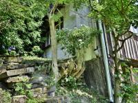 zadní pohled (Prodej chaty / chalupy 70 m², Stárkov)