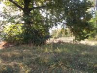 Prodej pozemku 2851 m², Trutnov