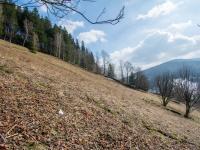 Prodej pozemku 3259 m², Pec pod Sněžkou