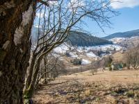 hranice pozemku - Prodej pozemku 3259 m², Pec pod Sněžkou