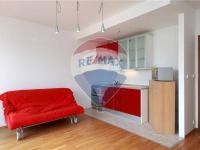 Pronájem bytu 1+kk v osobním vlastnictví 30 m², Praha 6 - Dejvice
