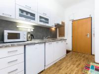 Pronájem bytu 1+1 v osobním vlastnictví 33 m², Praha 7 - Holešovice