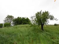Prodej pozemku, 15241 m2, Čisovice