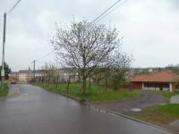 Prodej pozemku 708 m², Práče