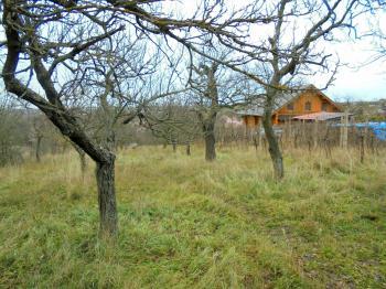 Prodej pozemku 2669 m², Nový Šaldorf-Sedlešovice