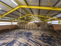 Jízdárna (Prodej zemědělského objektu 1900 m², Chříč)