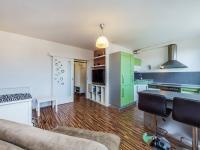 Prodej bytu 1+kk v osobním vlastnictví 31 m², Klecany