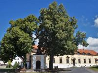 Prodej penzionu 750 m², Vinařice