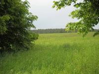 Prodej pozemku 2836 m², Černé Voděrady