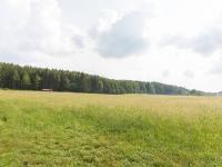 okolí (Prodej chaty / chalupy 60 m², Chaloupky)