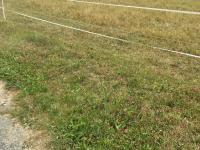 Prodej pozemku 1047 m², Loket